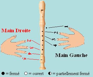 Tablature des flûtes à becs en do Main