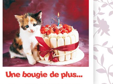 Anniversaire Loogan Carte-anniversaire-chat