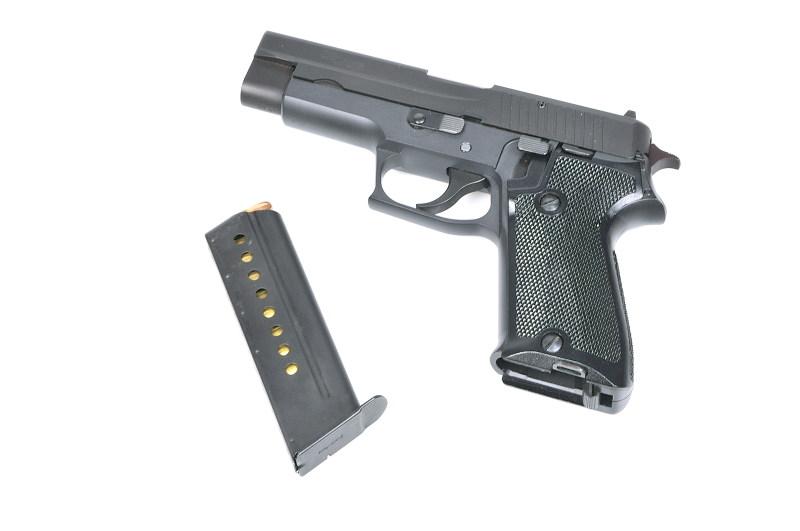 Sig P220 _DSC3065