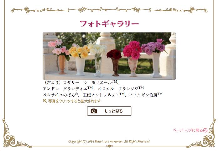 Berubara Fleurs Capture-d-e-cran-2014-06-05-a-15.31.20