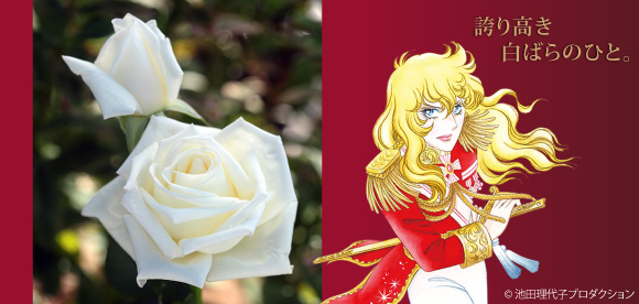 Berubara Fleurs Pic-main-img-2