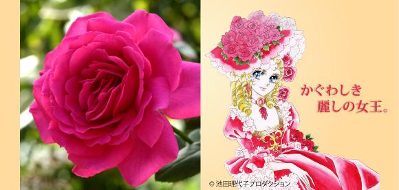 Berubara Fleurs Pic-main-img-4
