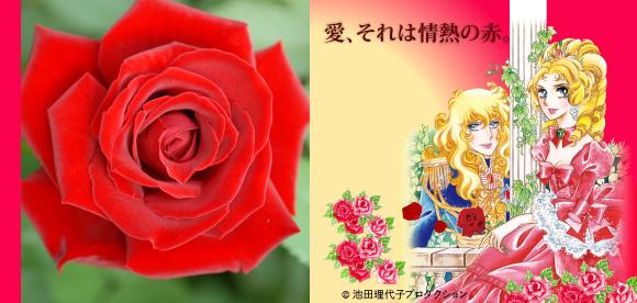 Berubara Fleurs Pic-main-img-5