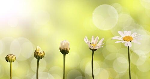 Homenaje a quienes conocen el valor del esfuerzo Shutterstock_249469894
