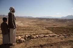 عسكرة الأراضي وضمان أمن الحيازة: مصر واليمن نموذجاً  P_2c33bd0f768c96a8d3365de793378490