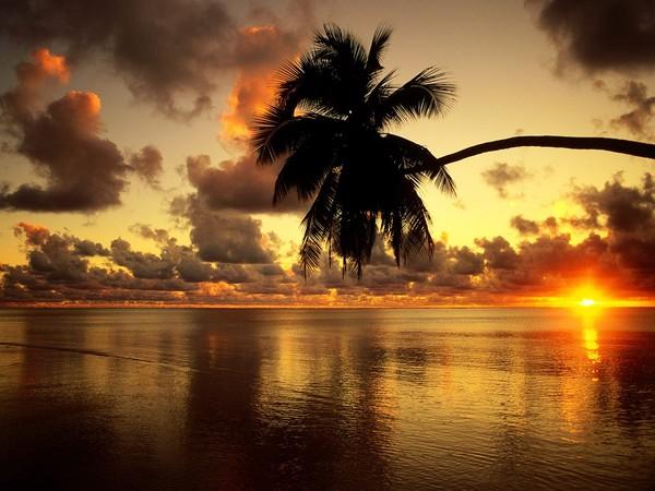 Images coucher de soleil - Page 5 00e43b08