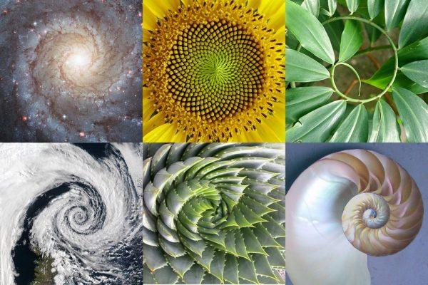 """¿Son las matemáticas una """"creación humana"""" o un """"descubrimiento""""? - Página 7 Codigooculto.com.3"""