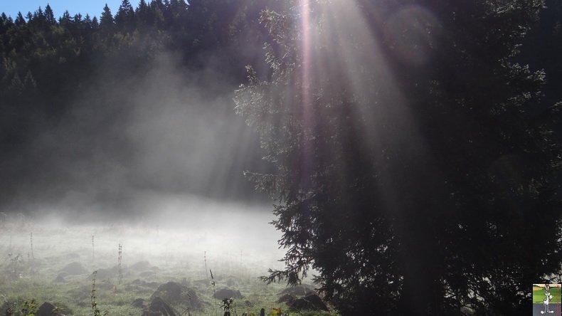 Brouillard à La Chaux Berthod (39) 001