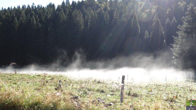 Brouillard à La Chaux Berthod (39) 004
