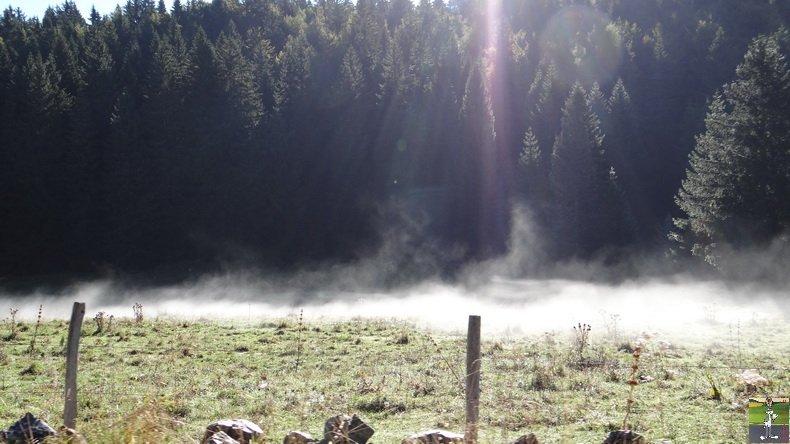 Brouillard à La Chaux Berthod (39) 005