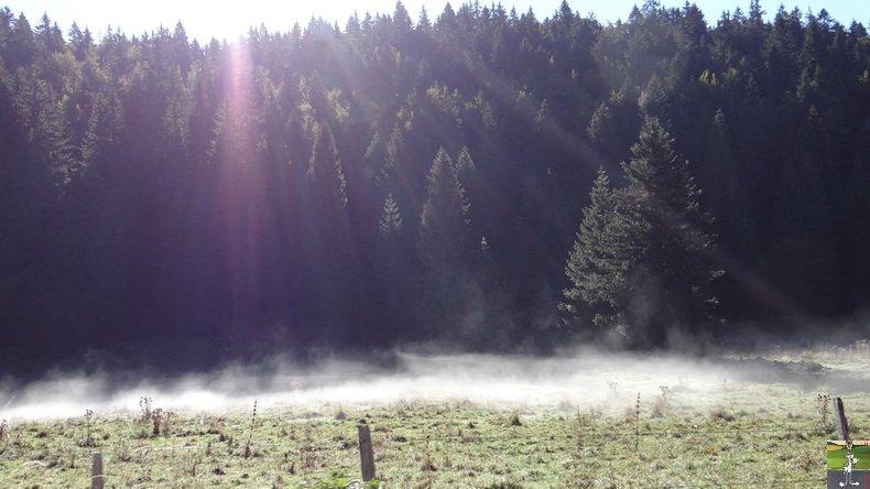 Brouillard à La Chaux Berthod (39) 006