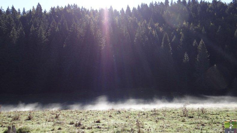 Brouillard à La Chaux Berthod (39) 007