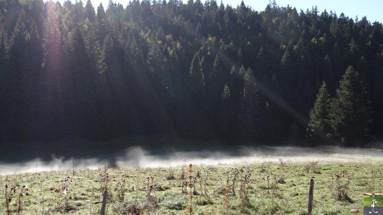 Brouillard à La Chaux Berthod (39) 008