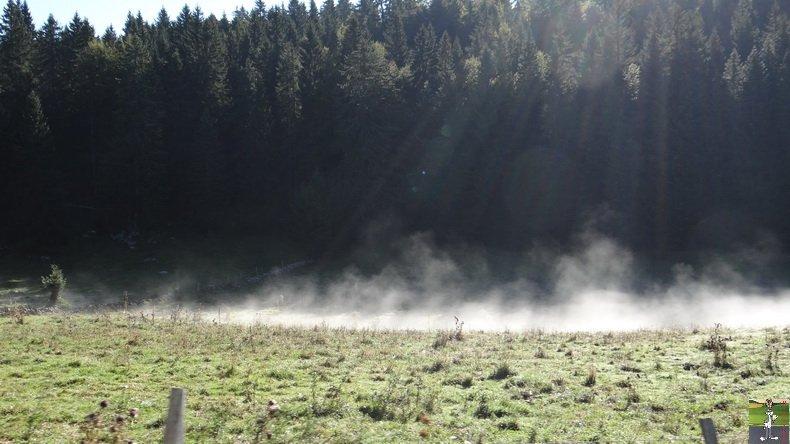 Brouillard à La Chaux Berthod (39) 010
