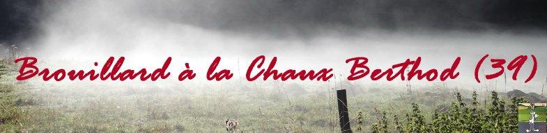 Brouillard à La Chaux Berthod (39) Titre
