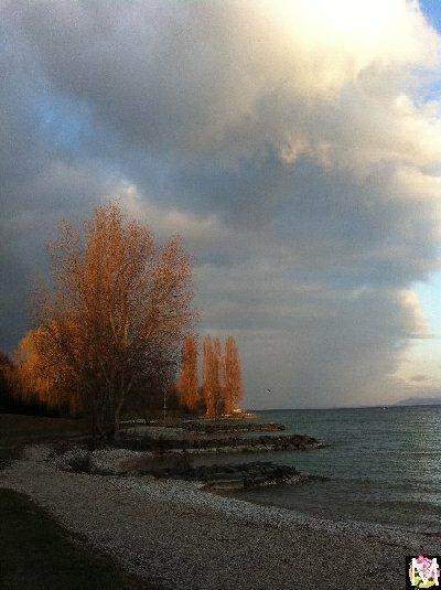 Neuchâtel - Un autre lac jurassien 2012-03-11_a