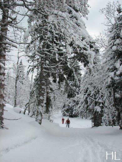 """Une """"baladaski"""" d'Hélène - Le tour du Mont Pela - 20 février 2010 0002"""