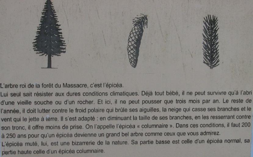 """Une """"baladaski"""" d'Hélène - Le tour du Mont Pela - 20 février 2010 0007"""