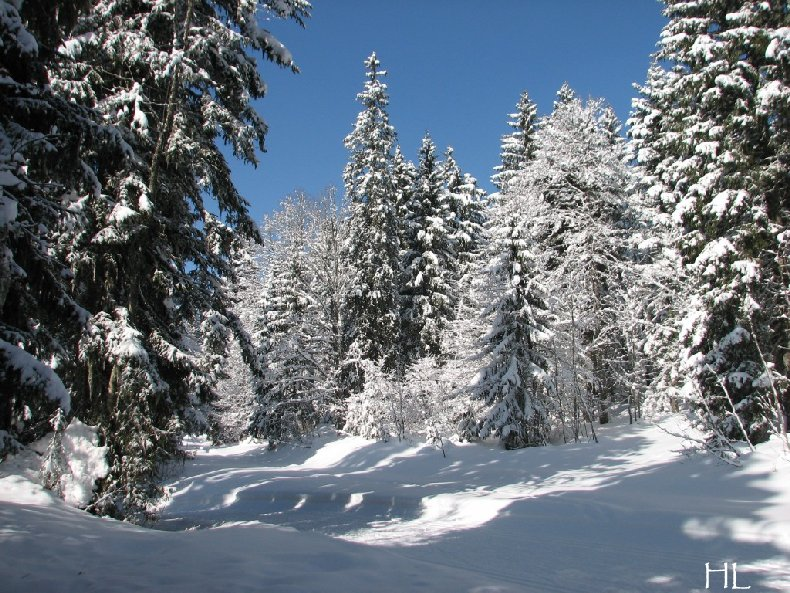"""Une """"baladaski"""" d'Hélène - Le tour du Mont Pela - 20 février 2010 0008"""