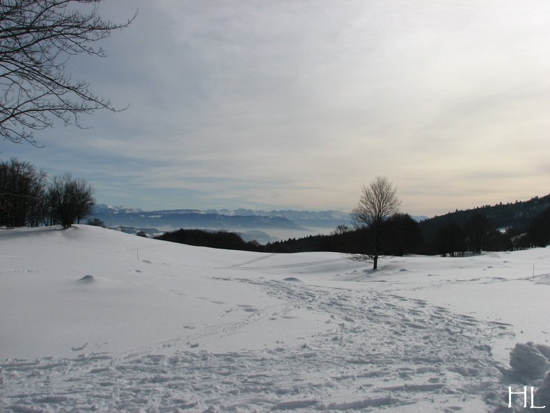 Au sud du Massif Jurassien, le Plateau de Retord 0011