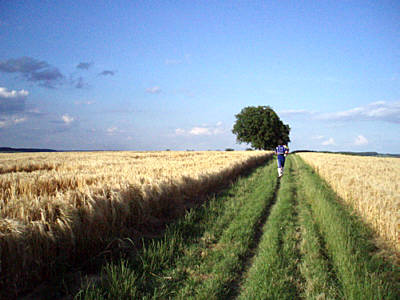 "80km à Karlsruhe (D), ""Fidelitas Nachtlauf"": 23-24/06/2012 Fidelitas-nachtlauf-07"