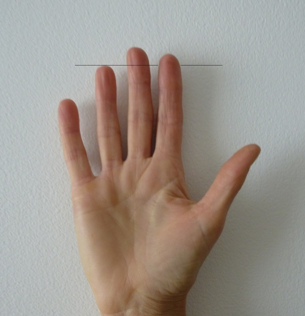 The Index finger: Psychology of the very long and short - ARTICLE Long-index-990x1024