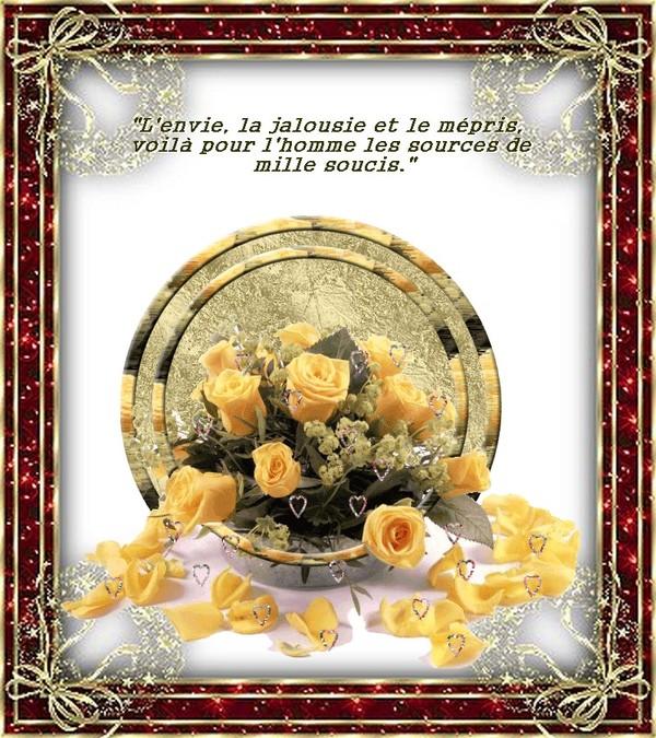 ♥Pensée du Jour♥ 74d4a336