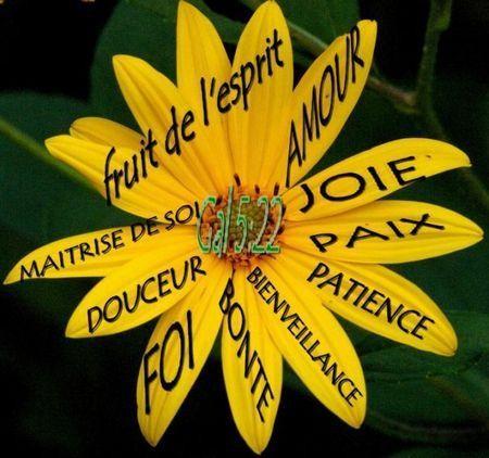 Michel blogue avec Valérie/sujet/''Quand le Seigneur Parle au coeur'' A72d3c6d