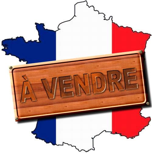Europe, Trilatérale, mondialisme, soyez un conspirationniste : tôt ou tard, vous serez forcément dans le vrai - Page 3 France-%C3%A0-vendre