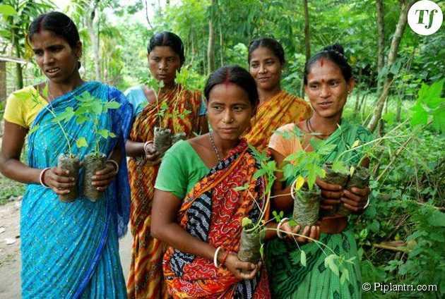 Eco-féminisme : ce village indien plante 111 arbres quand une petite fille naît 279567-piplantri-le-village-indien-qui-990x0-3