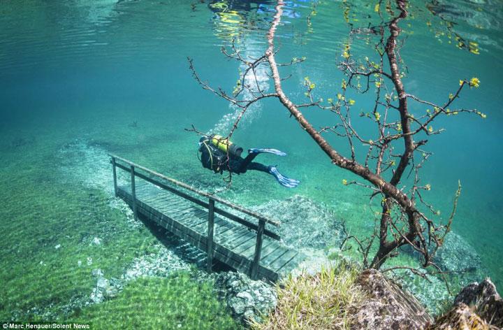 Le Grüner See, un lac qui a la particularité d'être…éphémère Gr%C3%BCner-See-austrian-submerged-park-2
