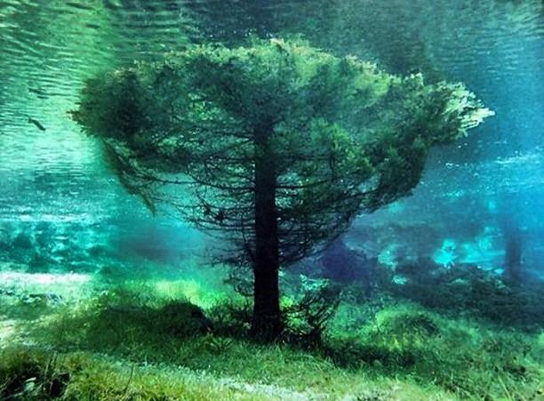 Aucun trucage dans ces photos incroyable du lac Grüner See Gruner-See-1-e1378824185778