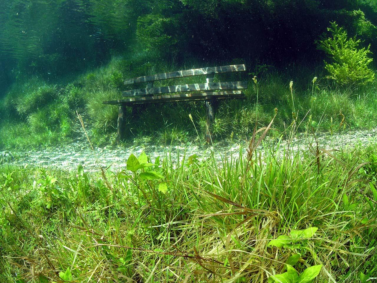 Aucun trucage dans ces photos incroyable du lac Grüner See Le-lac-Gruner-See-Etat-de-Styrie-Autriche-photo-02