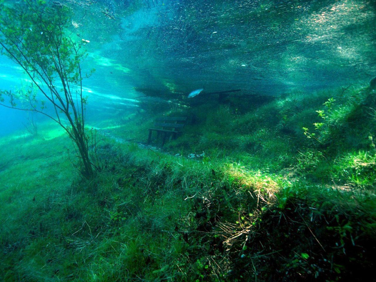 Aucun trucage dans ces photos incroyable du lac Grüner See Le-lac-Gruner-See-Etat-de-Styrie-Autriche-photo-08