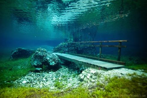Aucun trucage dans ces photos incroyable du lac Grüner See Tumblr_msx1igqZqn1qmvxavo4_500