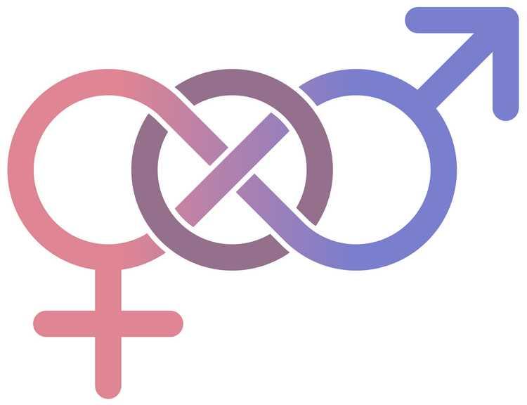 Bichon, la bande dessinée qui prépare les enfants à l'homosexualité et à la théorie du genre Th%C3%A9orie-du-genre