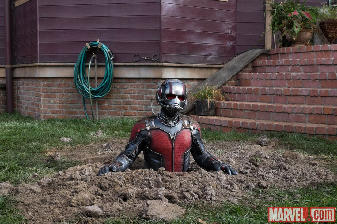 Ant-Man [Marvel - 2015] - Page 3 Ant-man-film-movie-image-funny