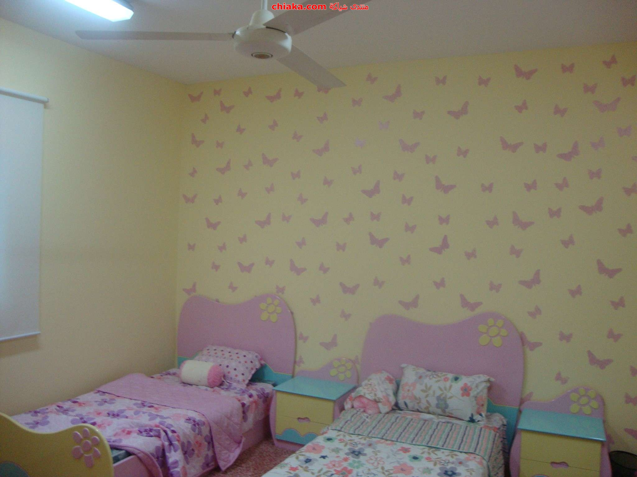 دهانات للجدران  Imgae1252708d02bf1b1eda631f8d9f5d3e