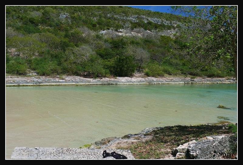 Les Belles Plages de Guadeloupe (LUMIX FZ50) Guadeloupe%202008%20-%20010