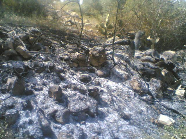 حريق عند الجدار %D8%B3%D9%81%D9%8A%D8%B1%D8%9B%28249%29