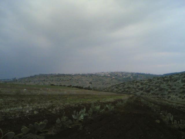 صور من وادي الحداد Sultan%3B%281435%29