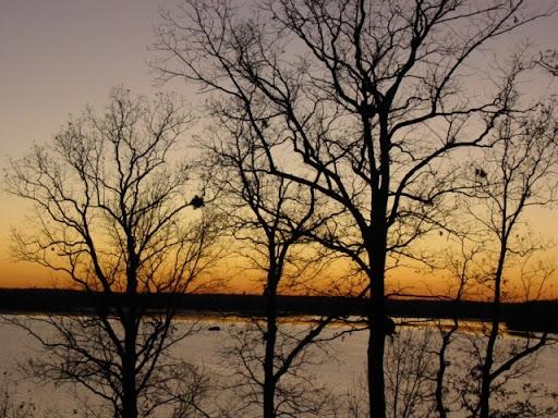 Sunsets @ Night DS22_112709d1_TNbigsndy_lakeSunsetView2
