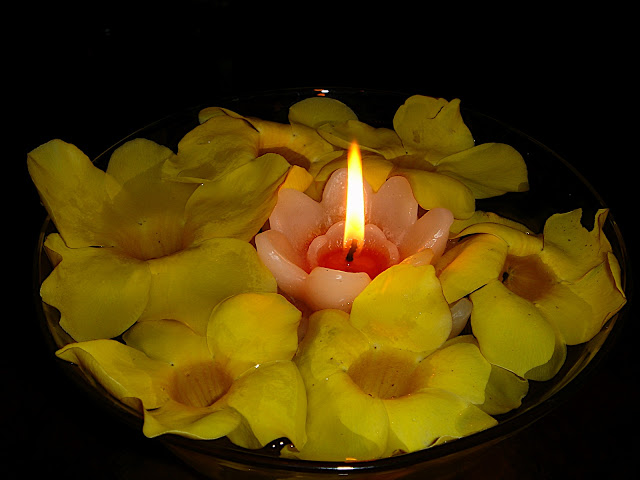 Plamen  svece DSC02547