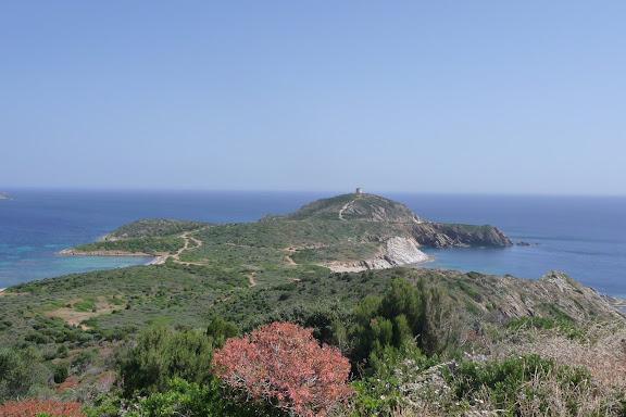 CR de notre petit sejour en Sardaigne P1010371