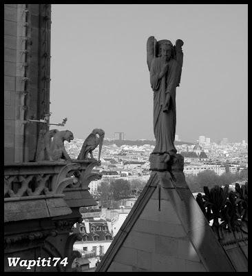 Une semaine printannière à Paris 51a.Notre-Dame