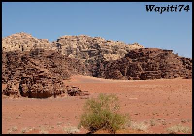 Jordanie : au pays des Nabatéens, des Grecs, des Croisés... et de Dame Nature ! Wadi%20Rum%20336