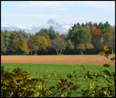 l'automne express IMG_0343