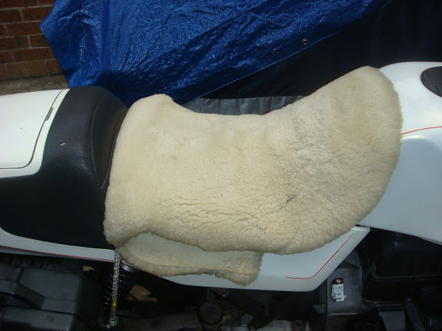 Fur on my seat... DSC04564