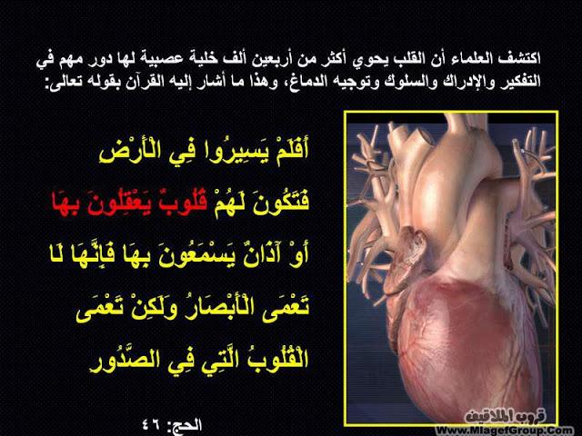 عجاءب الارض سبحان الله       نصيحه ادخل وشوف ATT591791