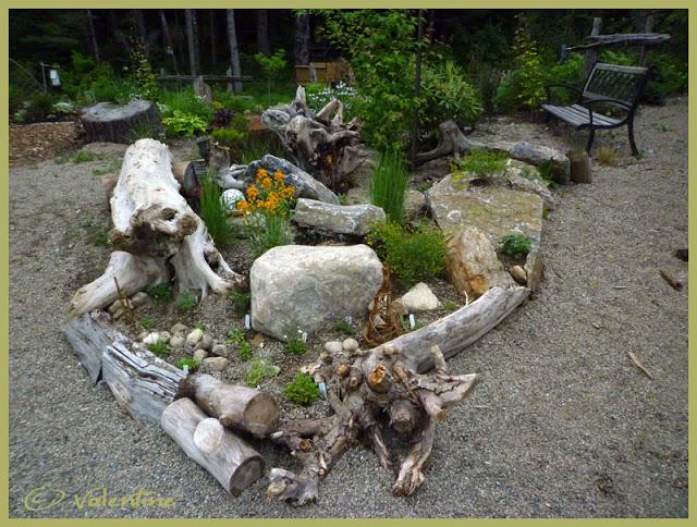 Jardin alpin MiniRocailleJardinAlpin10%2006%2003_84RM